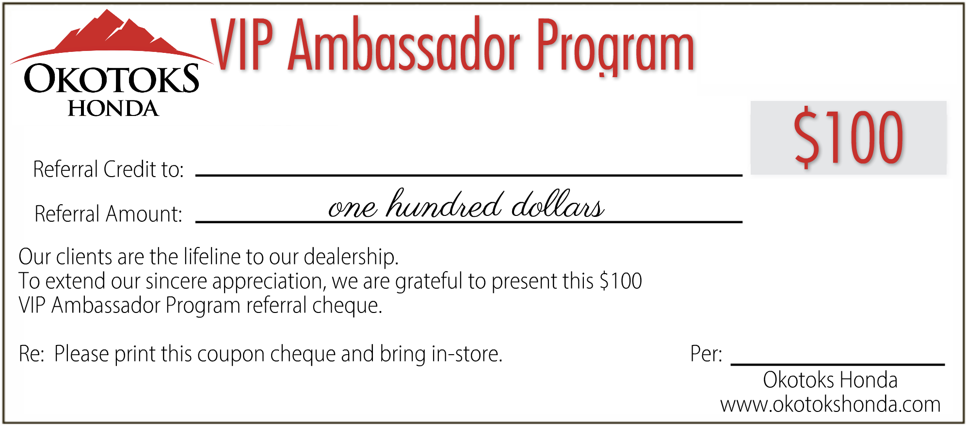 $100 VIP Ambassador Program